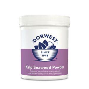 Dorwest Alga Kelp u prahu