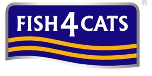 Fish 4 Cat