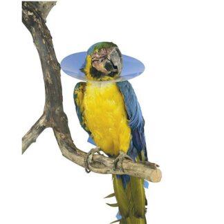 Kruuse Ovratnik za ptice fi 8cm 1kom